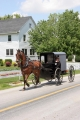 Amish People